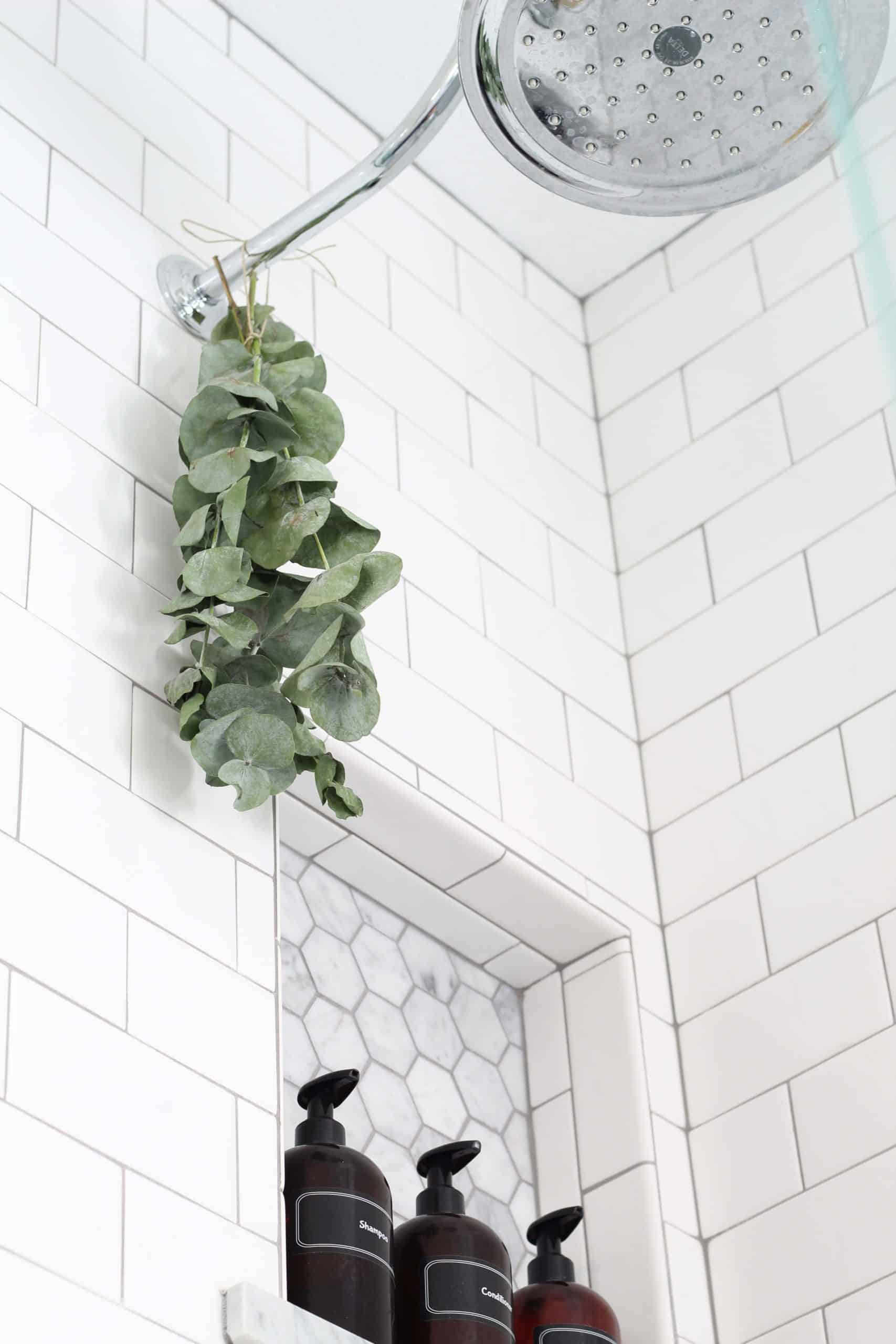 shower head with eucalyptus hanging from it and with subway tile with gray grout