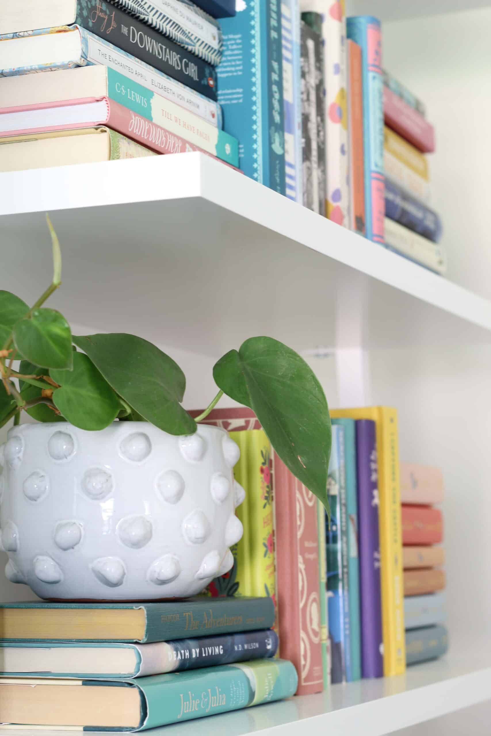 ladder bookshelf with penguin clothbound classics and wordsworth collector editions and white dot planter pot
